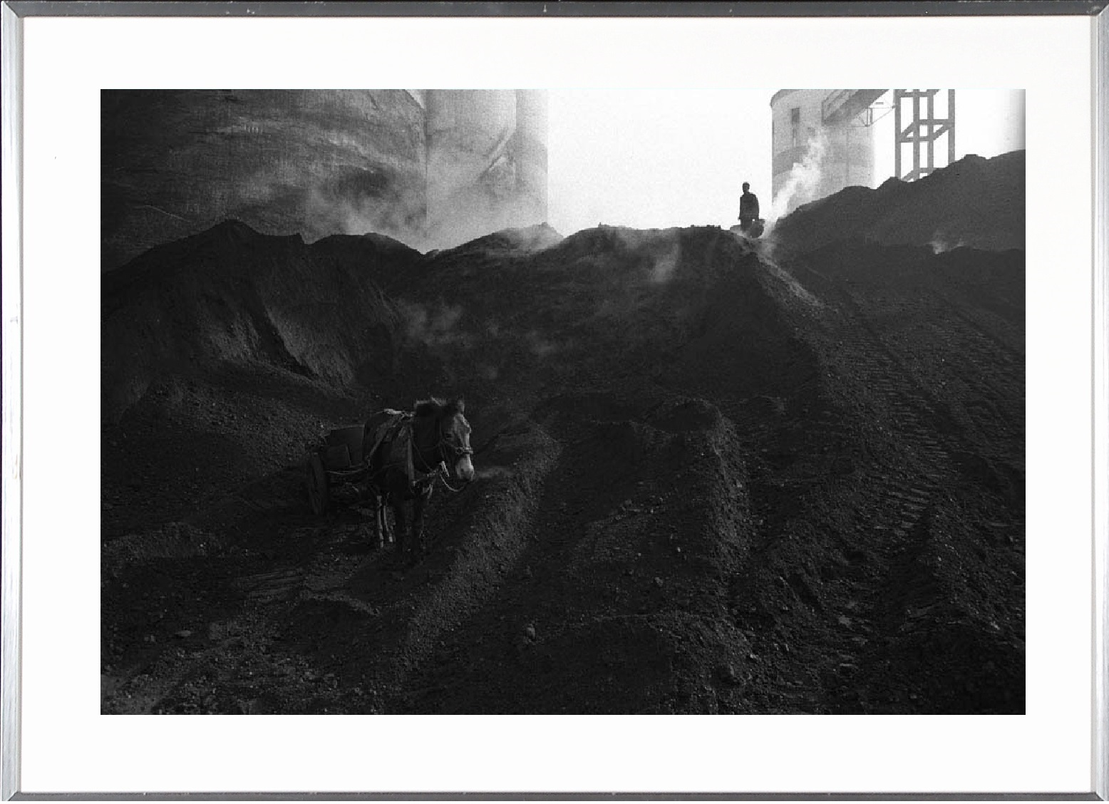 China, coalmine horse